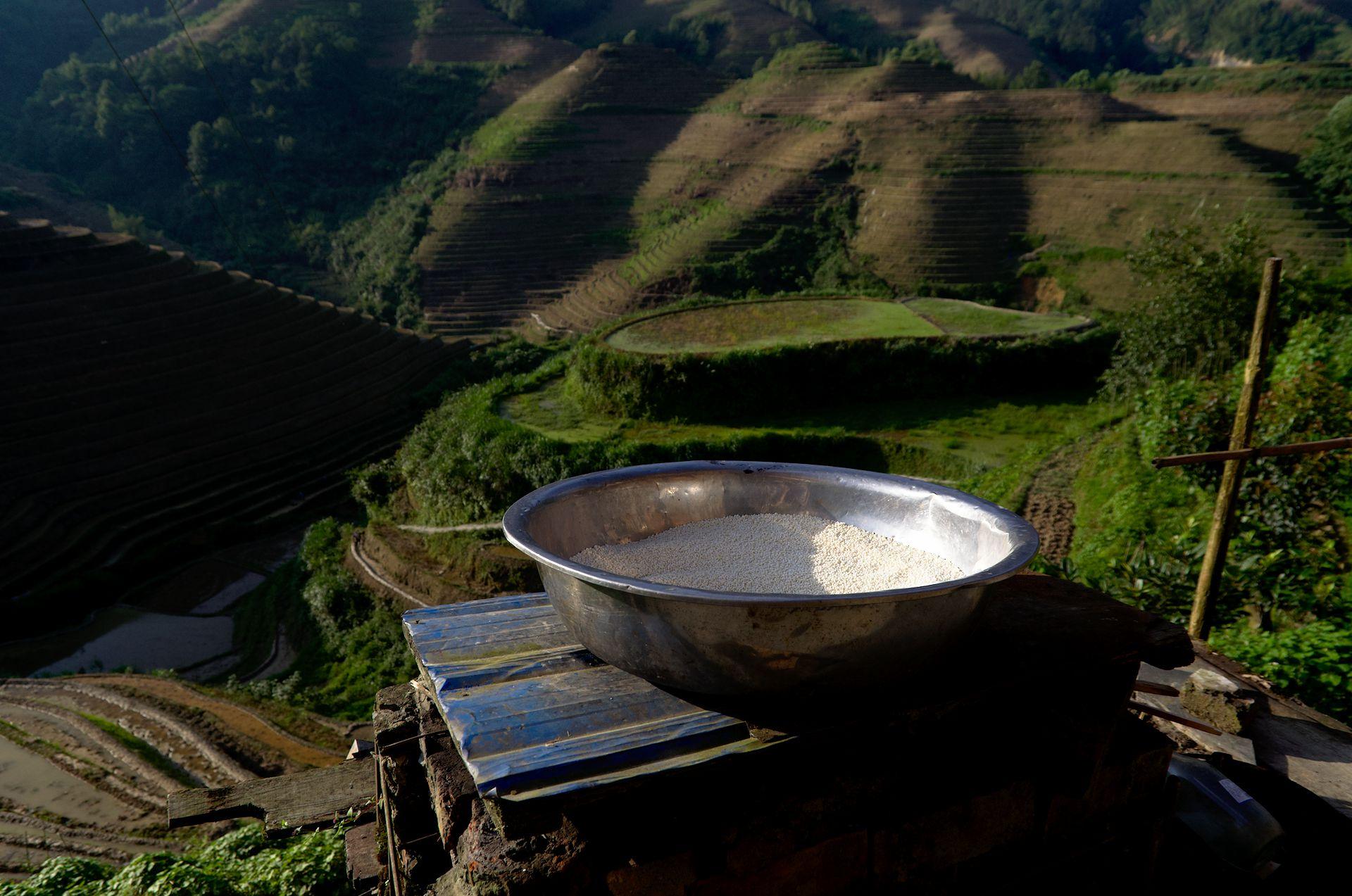 Los arrozales de Longsheng
