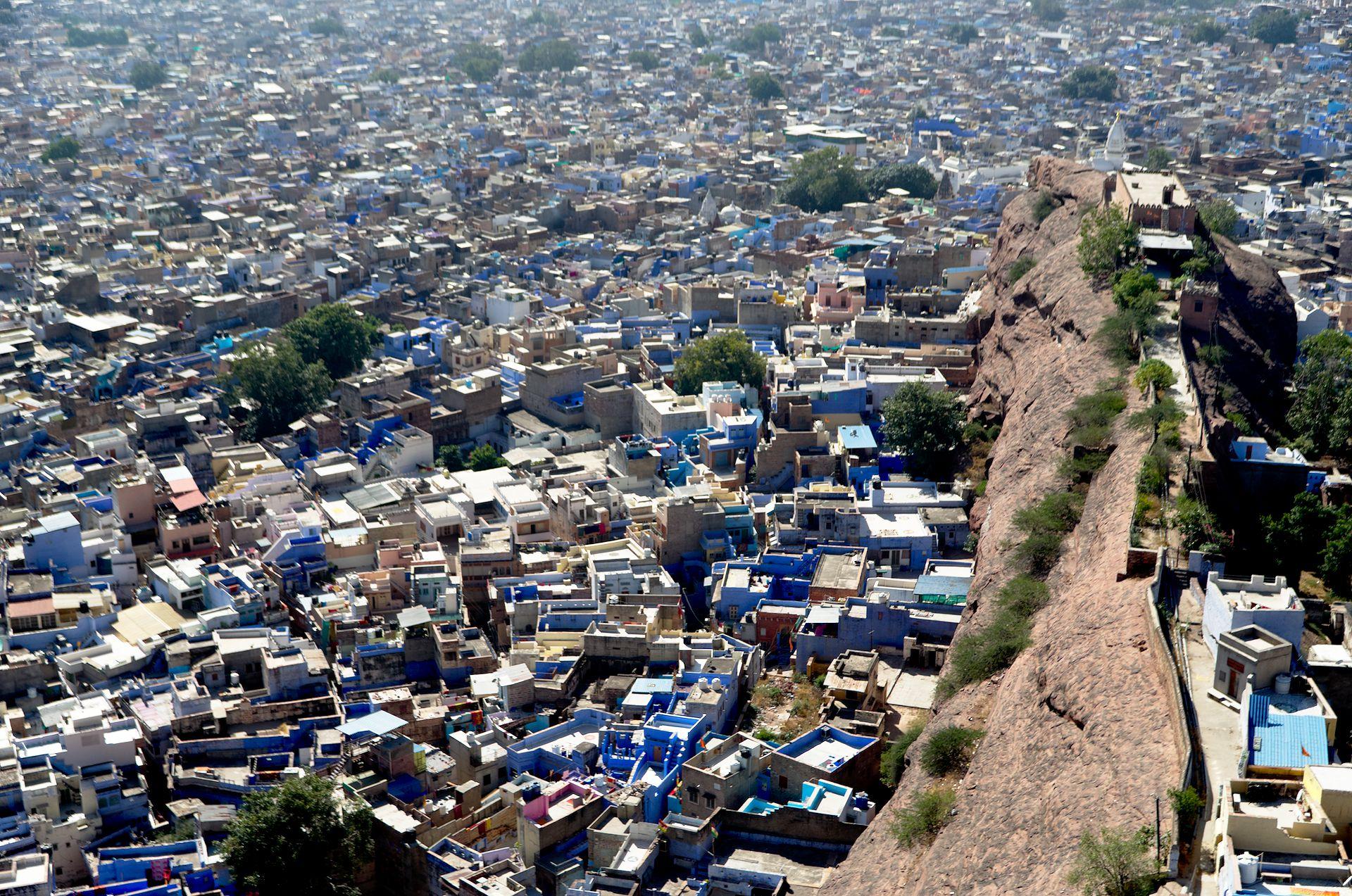 Indigoblaues Jodhpur